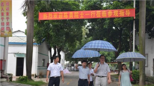 中国科学院广州能源研究所陈勇院士来访东莞一翔