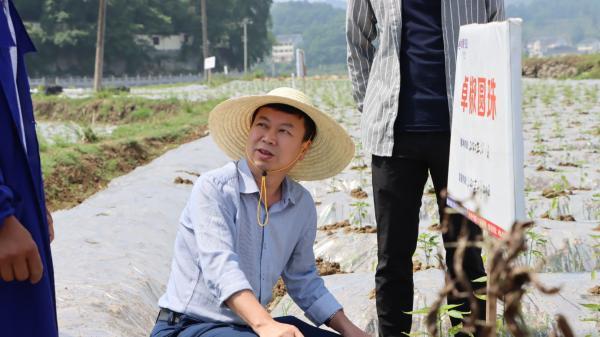 華南農業大學張承林教授赴貴州卓豪農業做水肥一體化技術交流指導